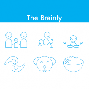 The Brainly cover